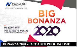 Pearlvine Bonanza 2020 - Fastest Auto Pool Income Plan