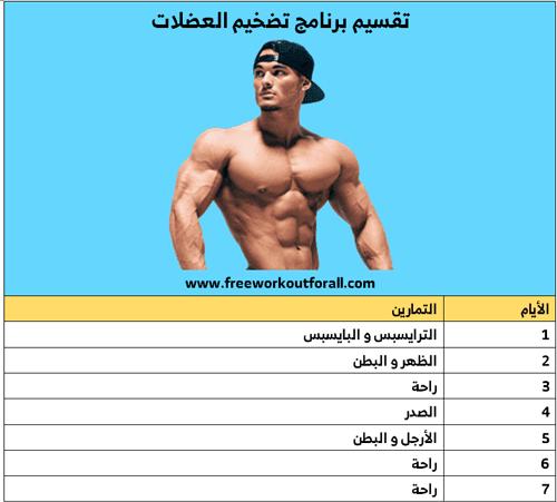 جدول تمارين تضخيم العضلات