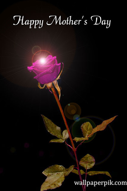 pink rose happy mother images 2021