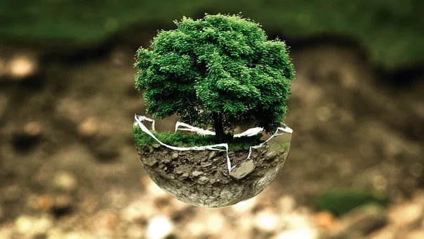 पारिस्थितिकी  एवं पर्यावरण से सम्बंधित  महत्त्व पूर्ण तथ्य