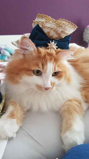 a red cat with wrist cuffs on her head, which looks like a 17th century fontanage