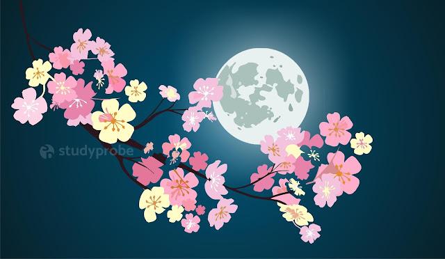 Supermoon_Flower_Moon_Study_Probe