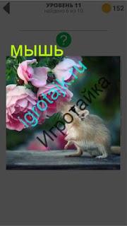 мышь нюхает цветы на дереве 11 уровень 400 плюс слов 2