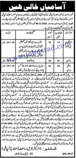 Jobs in Agriculture Department Punjab Nov 2020