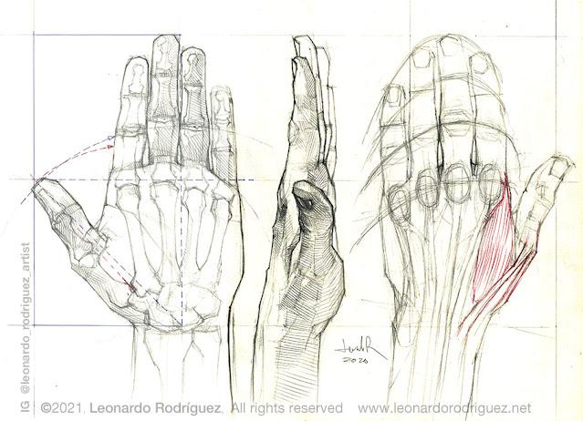 illustration-artist-leonardo-rodriguez-barcelona