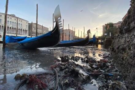 Στέγνωσαν τα κανάλια της Βενετίας