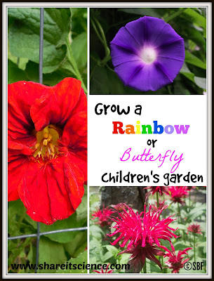 themed kids gardens rainbow butterfly