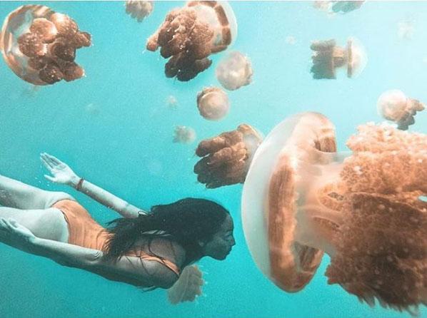 Pulau Kakaban Kepulauan Derawan