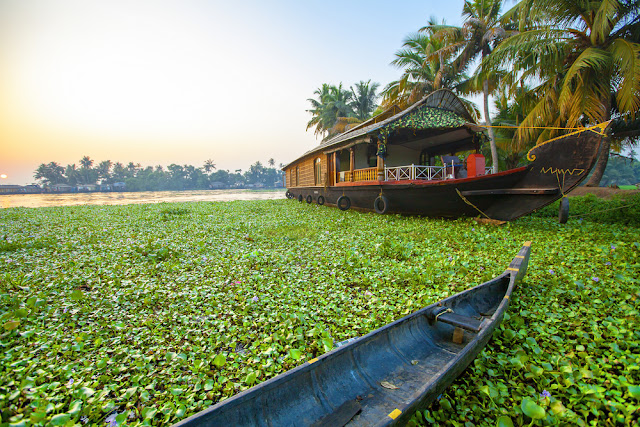 When In Kerala: 10 Must-Dos In India's Deep South