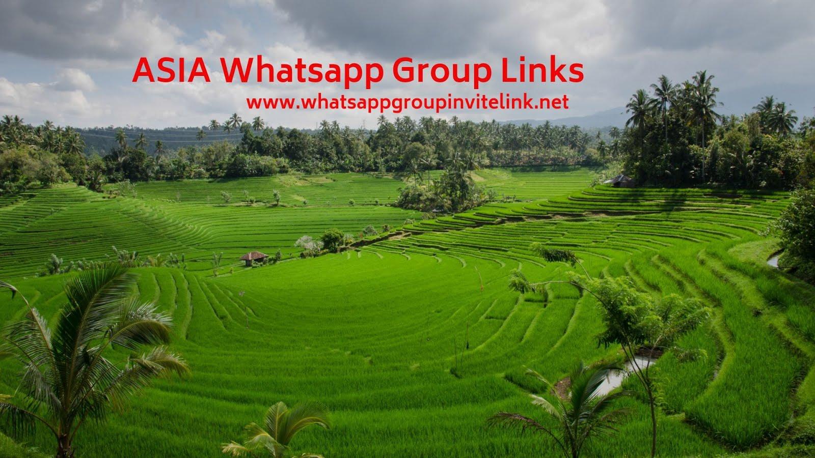 Whatsapp Group Invite Links: ASIA Whatsapp Group Links