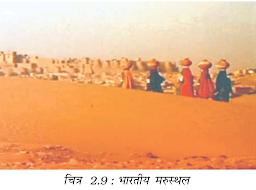 भारतीय मरुस्थल