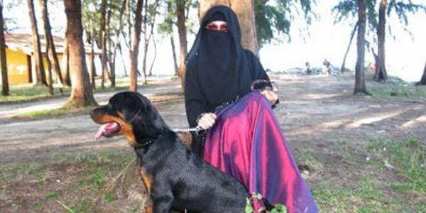 Bolehkan Orang Islam Memelihara Anjing?