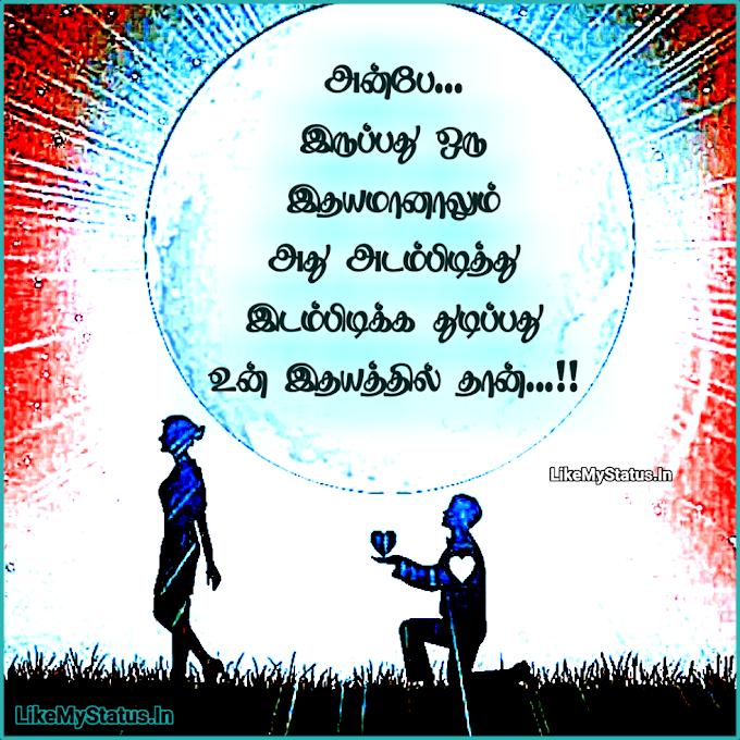 அன்பே... Love Propose Tamil Quote Image...