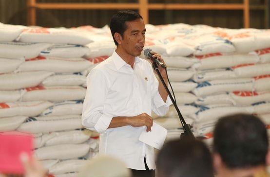 Jokowi: Pemerintah Itu Sebetulnya Tidak Suka Impor Beras