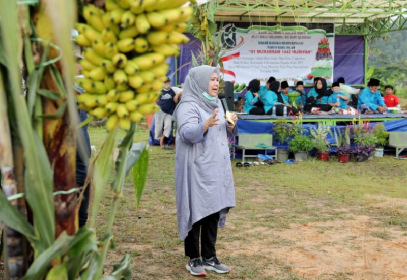 Warga Tembesi Bengkel Kebun Kecamatan Batuaji Undang Marlin Agustina Rudi di saat Gelar Syukuran Masa Panen