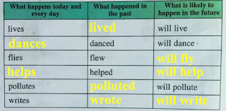 my story, class 5, lesson 7, question 4
