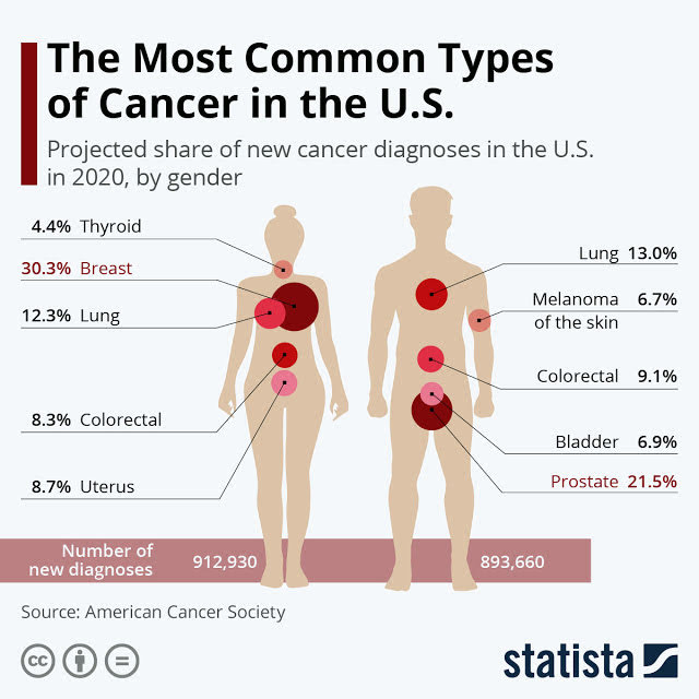 The Top 10 Cancers in the USA #infographic