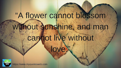 A flower cannot blossom without sunshine, | Romantic Quotes