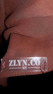 zlyn.co as a new brand