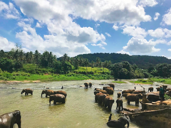 Travel Tuesday: Sri Lanka Vacation Bucketlist