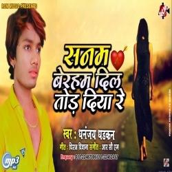 Sanam Beraham Dil Tod Diya Re (Dhananjay Dhadkan) new bhojpuri mp3 download