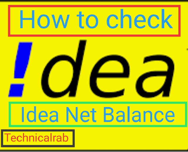 how to check idea net balance