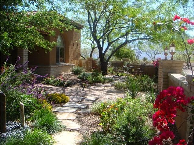 Landscape Ideas - vitaminkay: low water landscape design