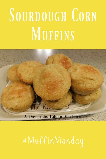 Sourdough Cornbread Muffins pin