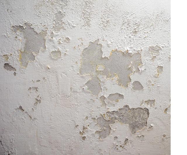 Przyczyny wilgoci w domu - grzyba i pleśni na ścianie i suficie