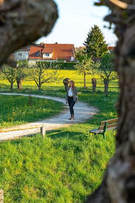 Premiumwanderweg DonAUwald | Etappe 2 von Offingen nach Gundelfingen 02