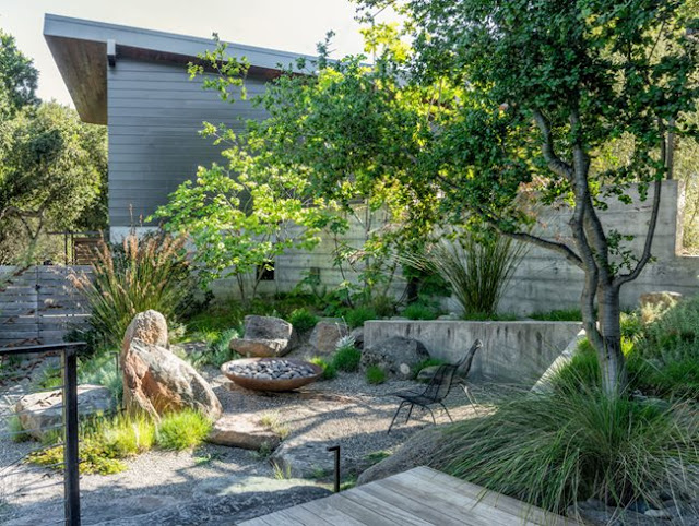 Dozens of Recommended Trees for the Cottage Patio