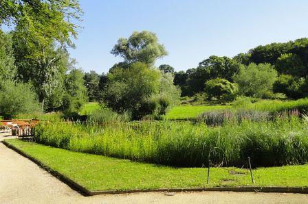 Frankfurt Botanical Garden