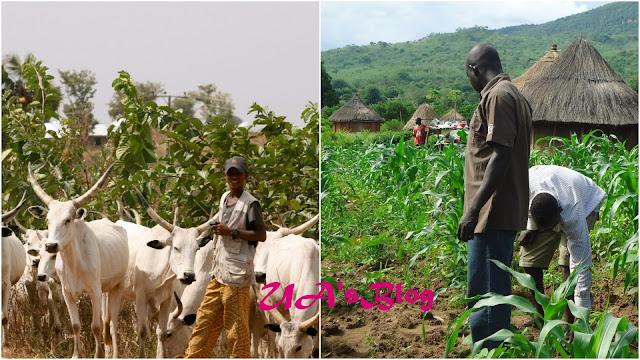 UN reveals cause of Farmer-herdsmen clashes in Nigeria