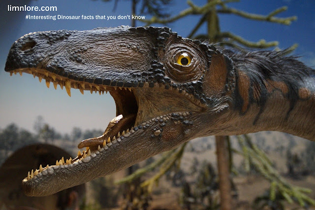 all the facts about Dinosaur