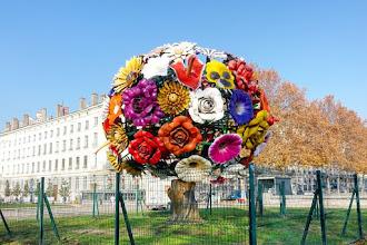 Ailleurs : Flower Tree, une oeuvre de l'artiste coréen Choi Jeong Hwa - Lyon 2