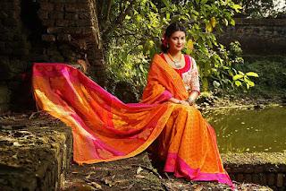 shobnom faria in saree