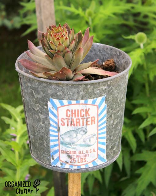 Mod Podge Chick Starter Pot organizedclutter.net