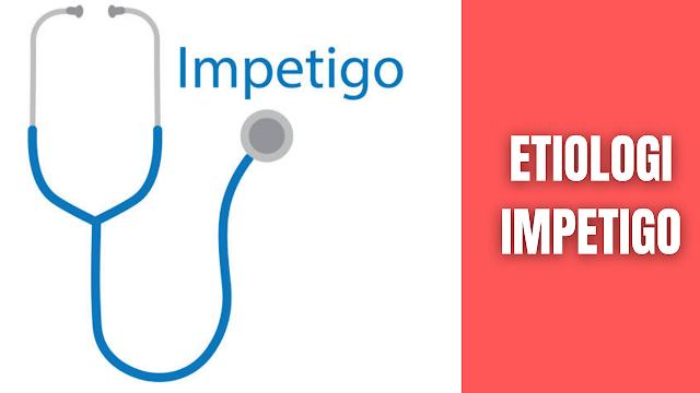 """Etiologi Impetigo Pada Manusia Penyebab peyakit impetigo ini adalah Streptococcus pyogenes dan Staphylococcus aureus, atau kombinasi keduanya (Craft et al.,2008). Kedua bakteri tersebut diketahui dapat menyebabkan pembelahan dan menyebar luas ke dalam jaringan melalui produksi beberapa bahan ekstraseluler. Beberapa dari bahan tersebut adalah enzim dan yang lainnya berupa toksin. Toksin tersebut menyerang protein yang membantu mengikat sel-sel kulit. Ketika protein rusak, bakteri dengan cepat menyebar. Sementara enzim yang dikeluarkan oleh bakteri tersebut akan merusak struktur kulit dan menimbulkan rasa gatal yang menyebabkan terbentuknya lesi pada kulit (Hamzah & Mahmudah, 2014).    Nah itu dia bahasan dari etiologi impetigo pada manusia, melalui bahasan di atas bisa diketahui mengenai etiologi impetigo pada manusia. Mungkin hanya itu yang bisa disampaikan di dalam artikel ini, mohon maaf bila terjadi kesalahan di dalam penulisan, dan terimakasih telah membaca artikel ini.""""God Bless and Protect Us"""""""