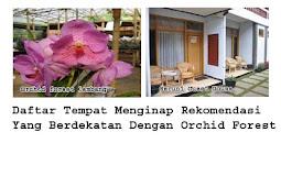 Daftar Hotel Villa Dan Guest House Lokasi Cukup Dekat Ke Orchid Forest Cikole Lembang