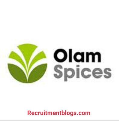 Supply Chain Planner At Olam Spices   0-1 years of Experience