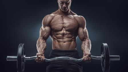 6 Strength Training Programs for Various Sports - Bodybuilder