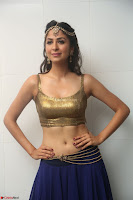 Malvika Raaj in Golden Choli and Skirt at Jayadev Pre Release Function 2017 ~  Exclusive 012.JPG