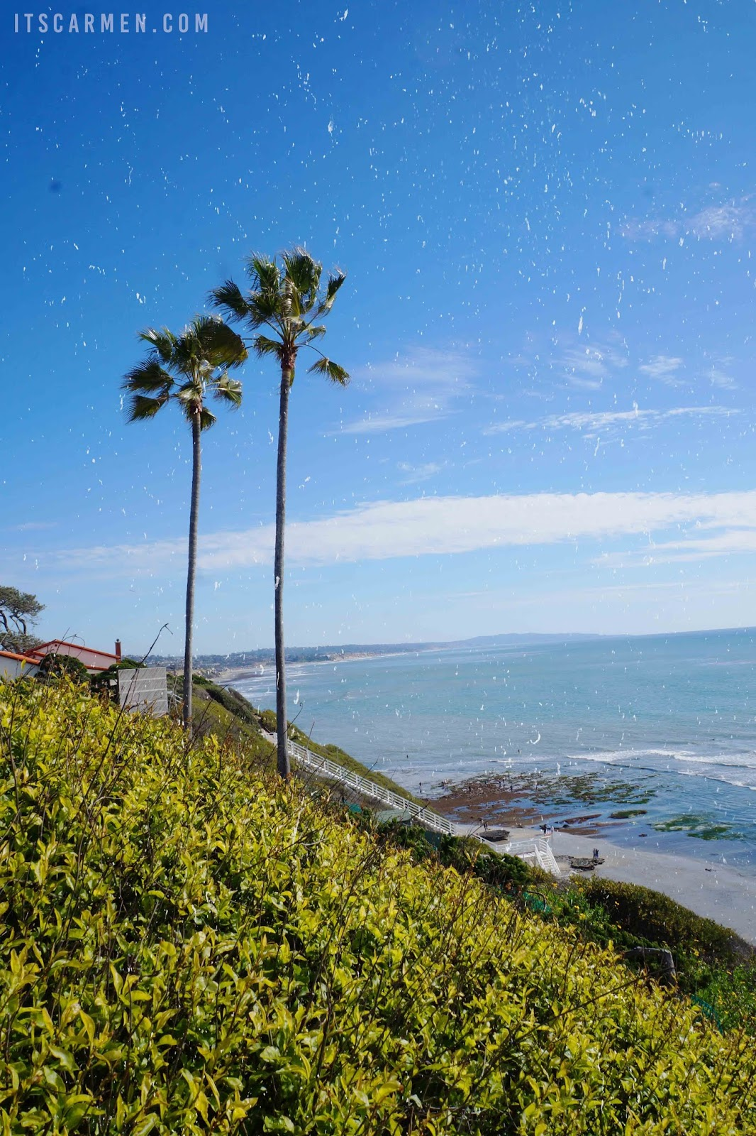 8 Things to Do in Encinitas, California: Don't Miss This North County San Diego Gem