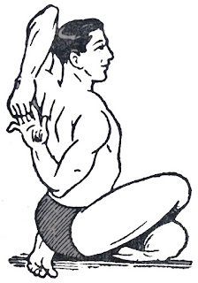 Gomukhasana or Cow Face Pose side Steps and Benefits