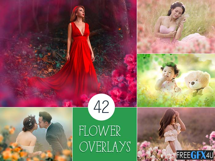42 Painted Flowers Photo Overlays Pack