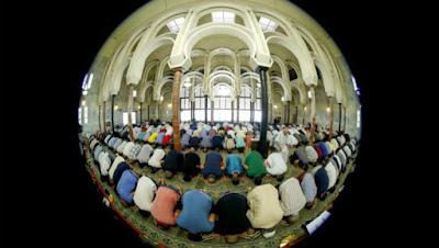 Holanda, Bélgica, imán, islam, ISIS, expulsión,