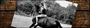 http://pamietnikjezdziecki.blogspot.com/