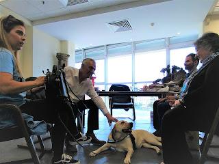 Ο Ανδρέας Παχατουρίδης στη συνάντηση με αντιπροσωπία σκύλων οδηγών και το Βαγγέλη Αυγουλά