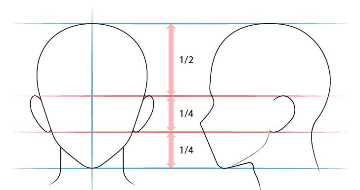 Langkah 2 - Menggambar Telinga