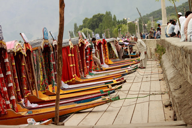 Dal Lake Boat Ride - Travel Blogger on Kashmir